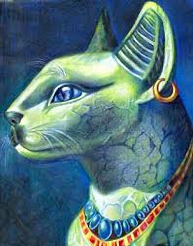 gatos egipcops