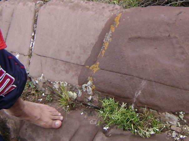 """footprintcomparison - Investigadores de Bolivia Hallaron Cerca del Lago Titicaca lo que Consideran la """"Huella Humana"""" más Antigua del Mundo"""
