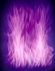 llama_violeta-233x300