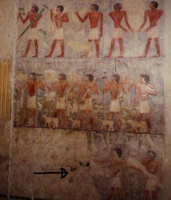faraones 012