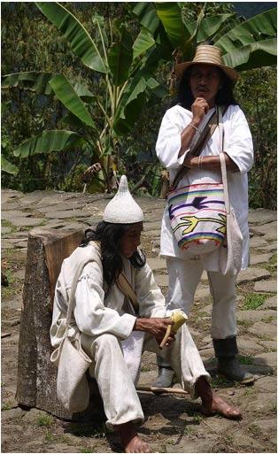 Chaman-Indigena-Koguis