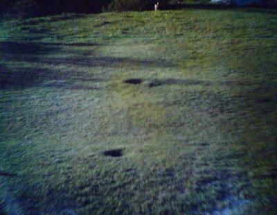 Huellas Victoria. Enero de 1998
