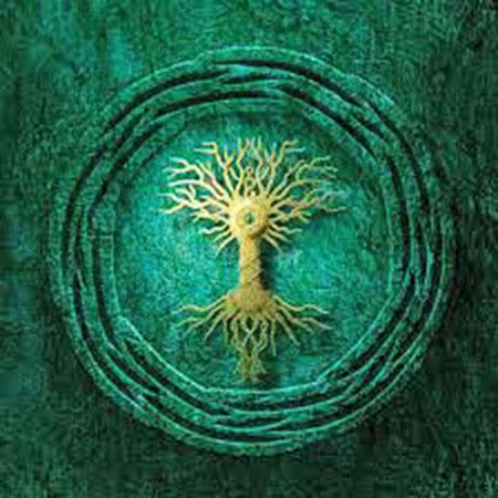 conscious_universe658_03